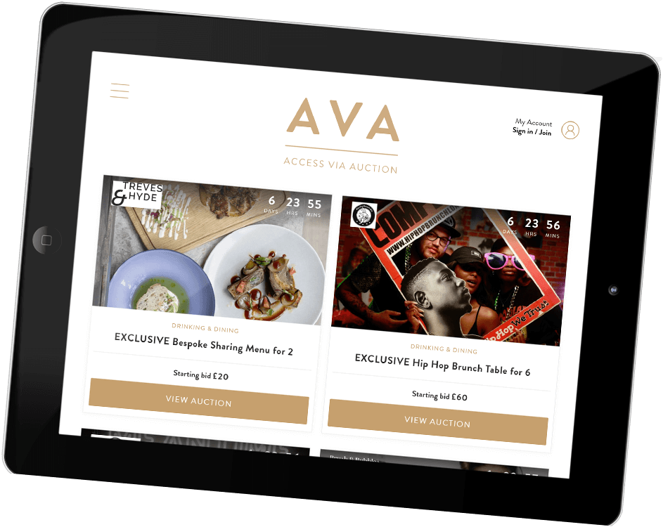 Web Design & Development | AVA Experience